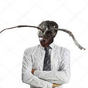 Hormiga Humana