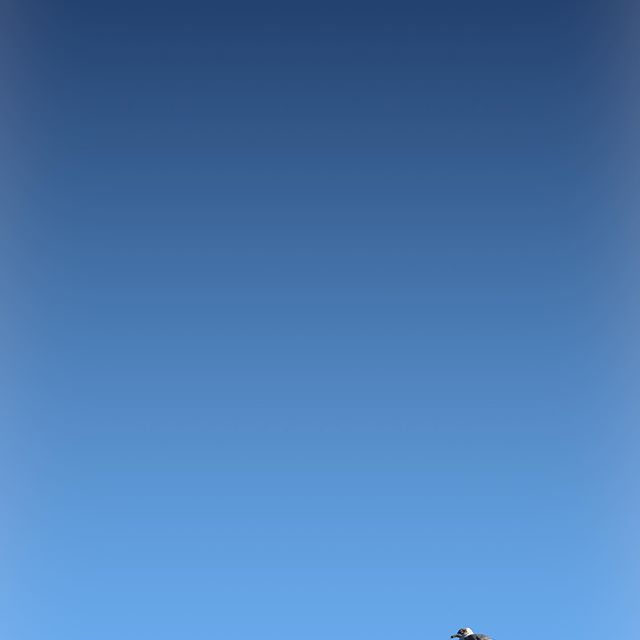 "Mine. • • •  Attempting a ""Woody G"" - 😃 • • • • #beautifulsky #outdooradventures #solotravelingisfun #letsgetlost #thisistravel #earthoutdoors #depthsofearth #somewheremagazine #welivetoexplore #folkscenery #visuallife #visualcollective #naturephotographer #naturephotograpy #naturephotography📷#acreativevisual #illgramers #aov5k #launchdsigns #tonekillers #strangertonez #travellingthroughtheworld #aov #vibegramz #earthshotz #adventuretime @woodygphoto"