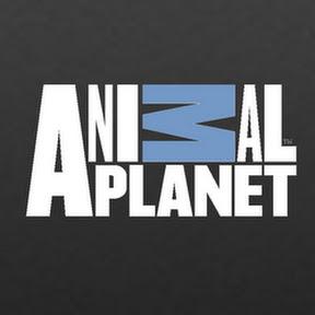animalplanetfulleps