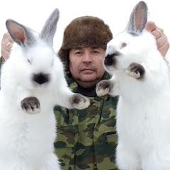 Еськин Кролик