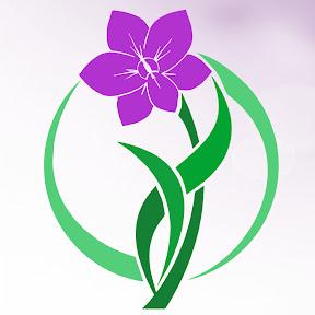 Orquídeas & Natureza