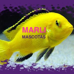 Marli Mascotas