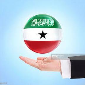 Somaliland Vision key