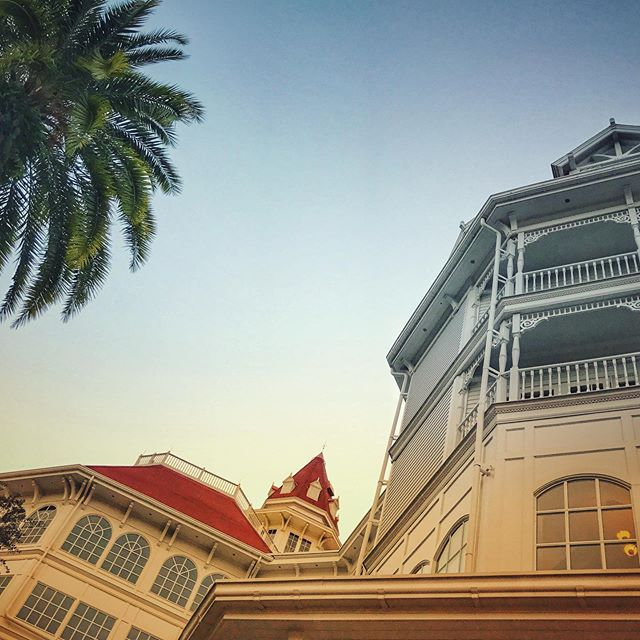Have a Grand week! ✨🌴 Looking up to a beautiful morning view at Disney's Grand Floridian, Disney World's Flagship Resort. Home to Senses Spa 💆‍♀️💆‍♂️, full service Afternoon Tea 🍵 and a full range of dining 🍽 (quick serve snacks to Chef's Table), and one 🚝 monorail stop from Magic Kingdom 🏰, it's a pricey but delightful Disney Experience! But also, as of 2013, home to @disneyvacationclub as well with an expansion that offered villa and studio rooms! 🐭 . . ✨ What's your ranking of it amongst your fav resorts... or, where does it sit on your resort wishlist? . . . #disneysgrandfloridian #disneygrandfloridian #disneygrandfloridianresortandspa #palmtree #disneyresorts #disneyresort #disneyworldresorts #disneyworldresort #waltdisneyworld #waltdisneyworldresort #disneyhotel #disneyexperience #disneyhotels #disneyworld #disneylocations #disneyparks #disneyvacation #disneyap #disneyguest #ilivewhereyouvacation #ilivewhereuvacation #disneyarchitecture #disneydesign