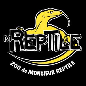 Monsieur Reptile