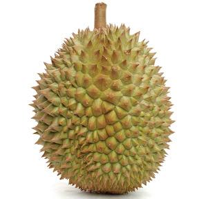 Durian Manis