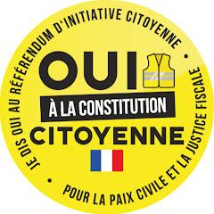 GiletsJaunes Constituants