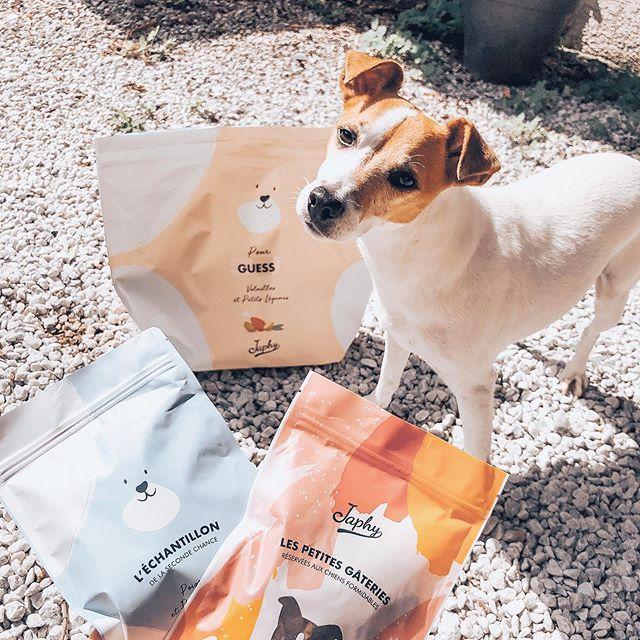 Hello 🌸 . . . 🐾 Aujourd'hui mon petit amour est bien gâté 😍. Nous avons reçu notre commande @japhy.fr 🐶  Japhy c'est quoi ?  Japhy c'est une marque française qui fabrique des croquettes « sur mesure» , en fonction des besoins de votre chien , elle sont 100% naturelles, sans céréales et avec un taux élevé de viande .  Les + de la marque : Guess a eu son paquet avec son prénom inscrit dessus 😍 #japhy#mydog#lovelydog#guess#croquette#instadog#picture #gatee#bonheur#intamoment#monday#picoftheday#jackrussell #alimentation#fabricationfrancaise
