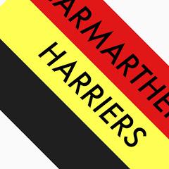 Carmarthen Harriers