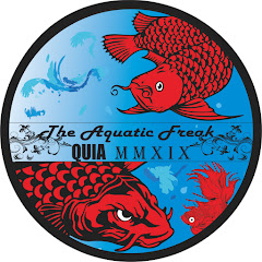 The Aquatic Freak