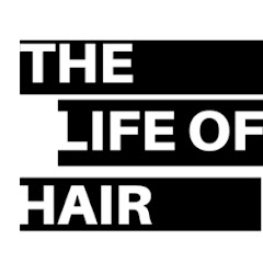 The Life Of Hair