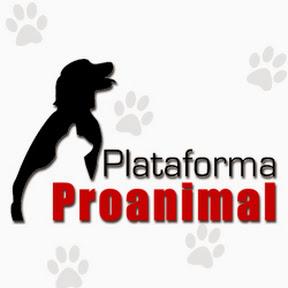 Plataforma ProAnimal