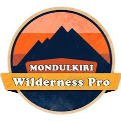 Wilderness Pro