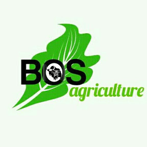 Bos agriculture Nepal