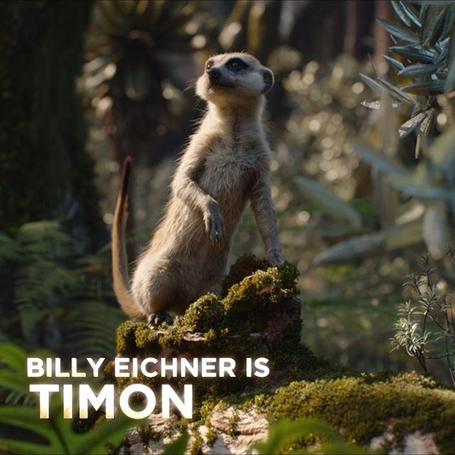 "Experience ""one of the funniest voice performances ever."" See @BillyEichner as #Timon in #TheLionKing today!"