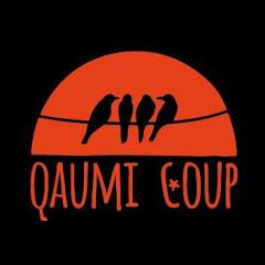 Qaumi Coup