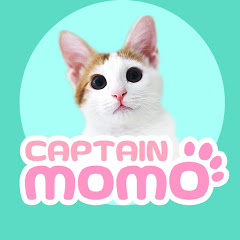 캡틴모모 captain momo