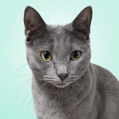 하마와 집사들 Hama and Cat Servants
