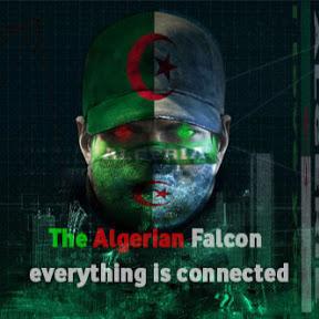 الصقر الجزائري