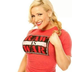 WWE Diva Outfits