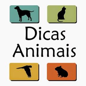 Dicas Animais
