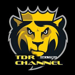 TDR Channel #19
