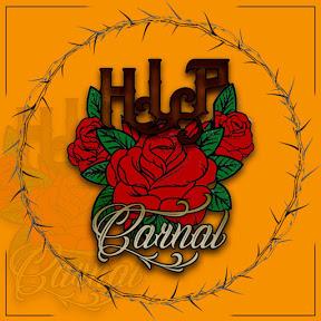 H.L.P carnal