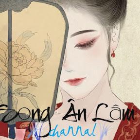 Song Ân Lâm Channel