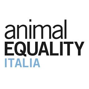Animal Equality Italia