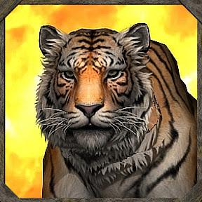 TigerNDV (Tiger Studios)
