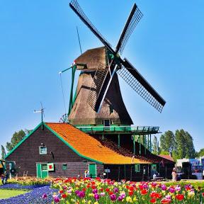 من داخل هولندا