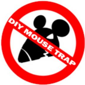 DIY Mouse Trap