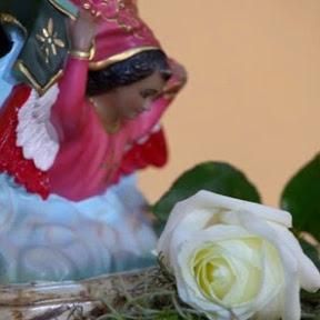 La Rosa De Guadalupe