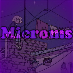 Microms -Bizon-