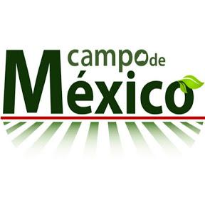 Campo de Mexico