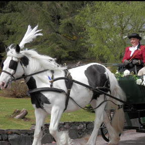 Carrbridge Carriage Driving