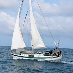Patrick Childress Sailing