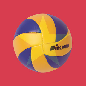 Volleyball Cup HD