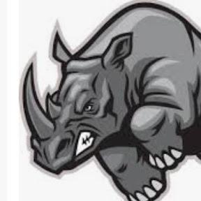 rhino scratches