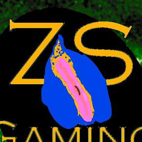 ZooM Strike Gaming