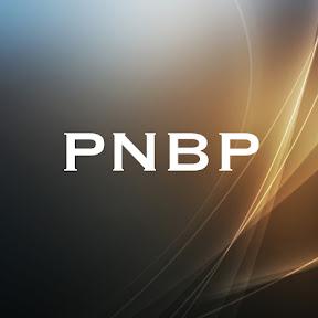 PNB Productions