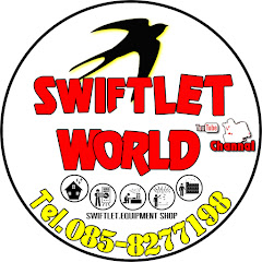 Swiftlet world