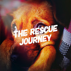 The Rescue Journey