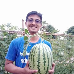 Farming Thailand