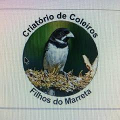 Coleiros filhos do Marreta!!!