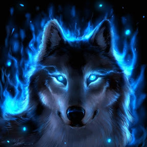 Wolfix Studio