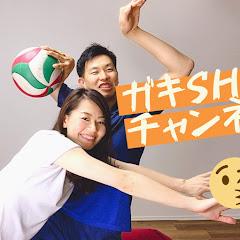 がきSHOWバレーボール