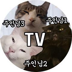 세 주인님을 모시는 집사 TV