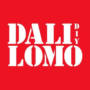 DaliLomo DIY