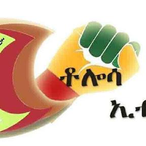 Tolosa Ethiopia
